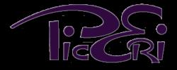 PicEri Design Logo